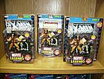BlackCat2006's Marvel Legends Collection-36.jpg