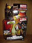 BlackCat2006's Marvel Legends Collection-201.jpg