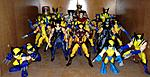 My Collection-wolverines.jpg