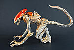 Kenner style NECA scale Panther Alien-pantheralien-002.jpg