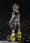 SH Figuarts Kingdom Hearts-2.jpg
