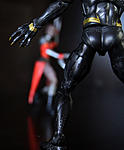 New to the Legends-black_panther4.jpg
