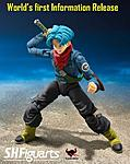 S.H. Figuarts Dragonball Super Future Trunks!-34645933_635427430123607_1770461286929268736_n.jpg