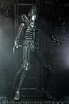NECA Ultimate Big Chap - Exclusive In-Hand Gallery-neca-ultimate-big-chap-alien-005.jpg