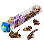 Battle Tribes - Weapons and Warriors-skull-dinosaurs-toobs.jpg